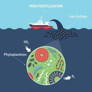 Image of geoenigneering the sea with iron fertilisation.