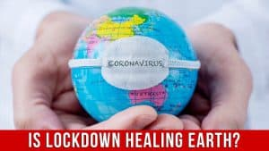 Campaign image: Is lockdown healing the earth?