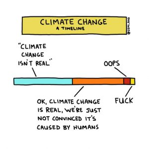Climate change cartoon timeline: It's not real, then its real but no human-cause, then oops, then fuck.