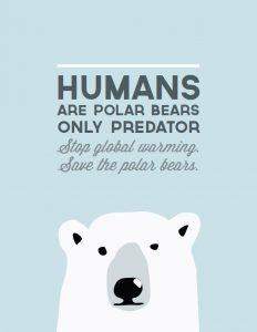 Save the polar bears image.